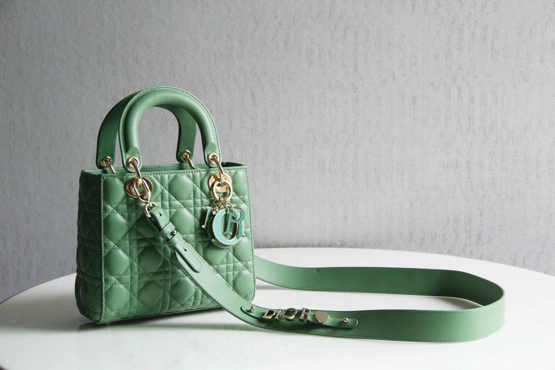 5 kiểu túi xách Dior mẫu mới nhất không thể bỏ qua