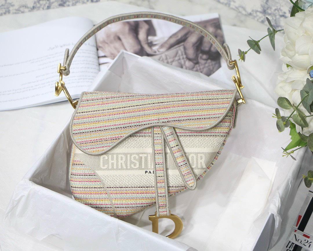 Tổng hợp các mẫu túi đeo chéo Dior nữ cá tính và sành điệu