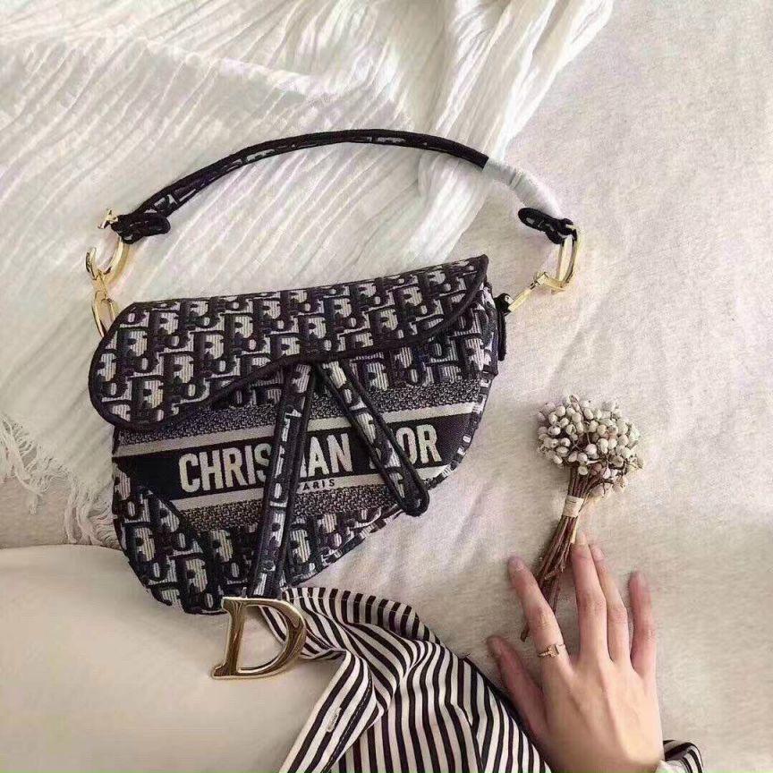 Túi Dior Saddle: Có nên đầu tư vào chiếc túi hiệu xa xỉ này?