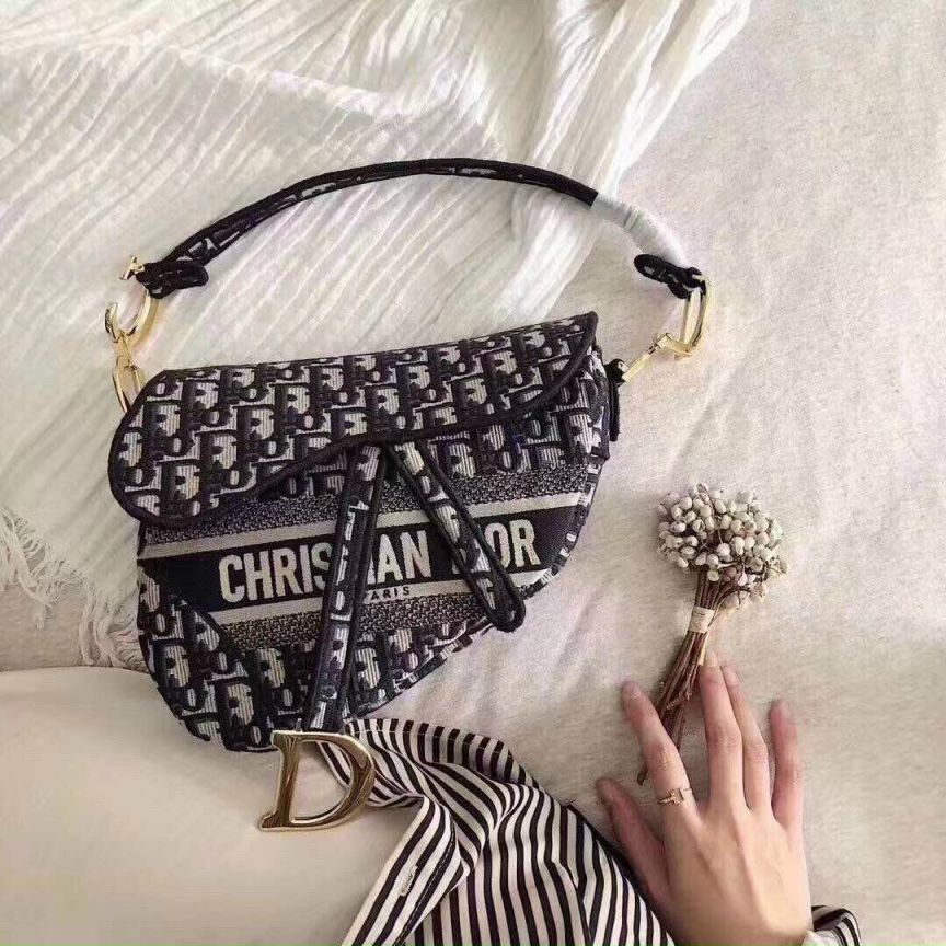 Túi xách Christian Dior Paris giá bao nhiêu mới nhất?