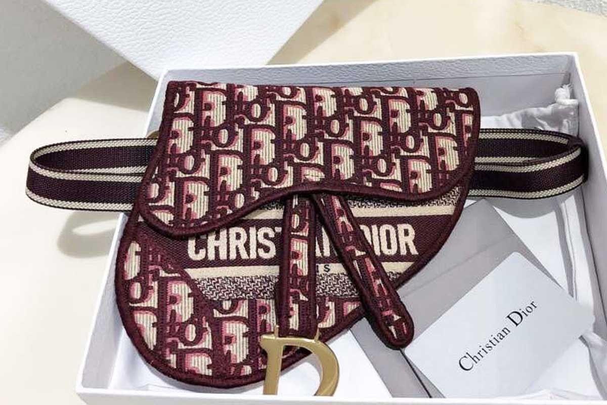 Tư vấn túi Dior yên ngựa có mấy sizechi tiết nhất