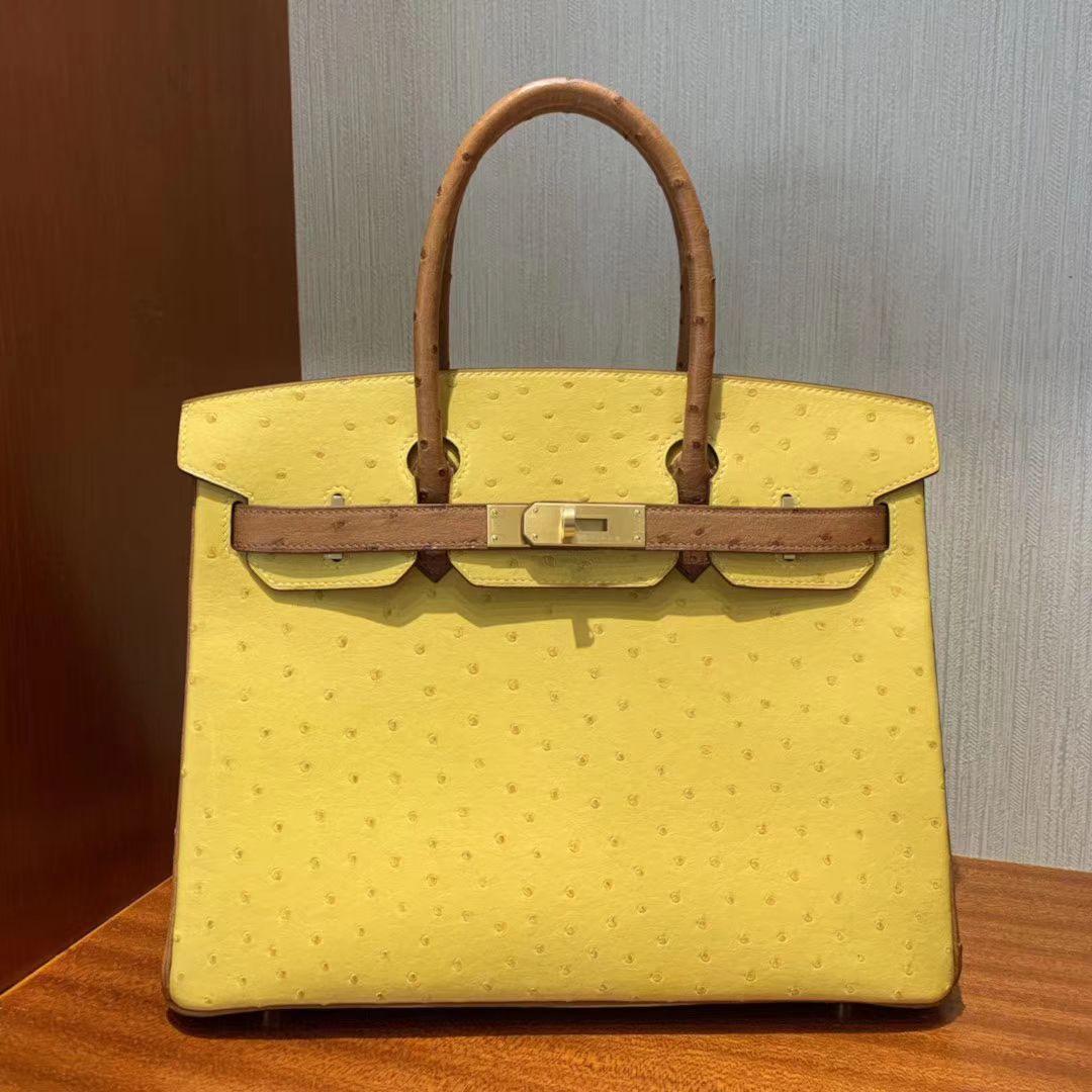 Tiết lộ những chiếc túi xách nữ hàng hiệu trị giá cả… Gia tài