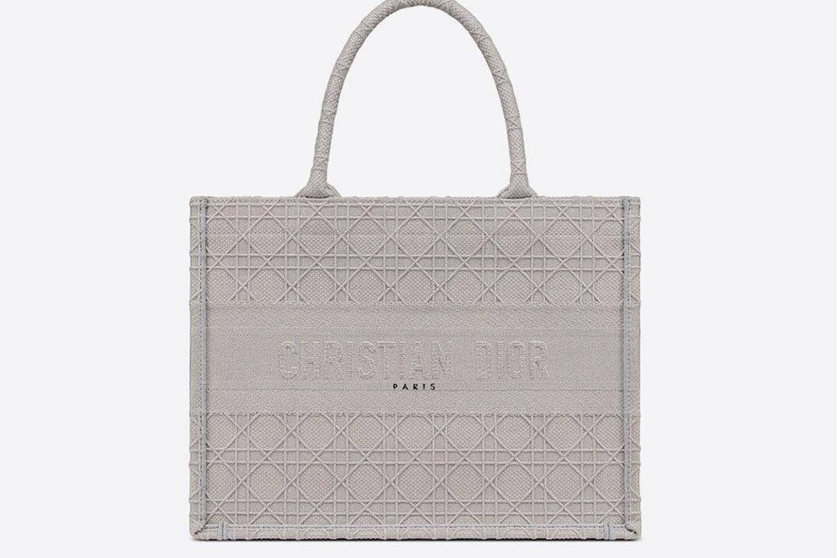 Tổng hợp mẫu túi Christian Dior Book Tote hot xìn xịt